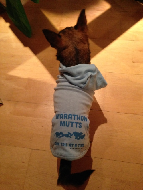 Marathon Mutt