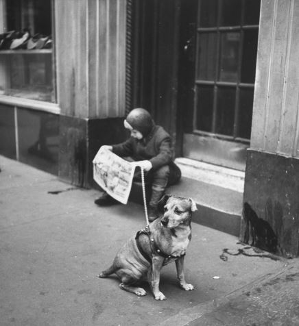 Boy with his dog (image)